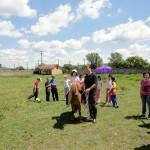 Trip-for-kids-Sibiu